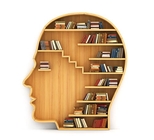 Concept Of Training. Wooden Bookshelf In Form Of Man Head. Scien
